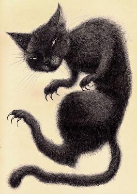 black+cat